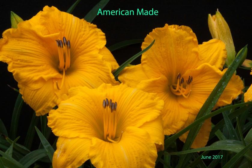 American Made 20 Jun 17 IMG_5290