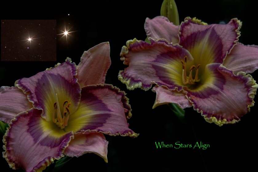 When Stars Align Text 8 June 18 IMG_7094